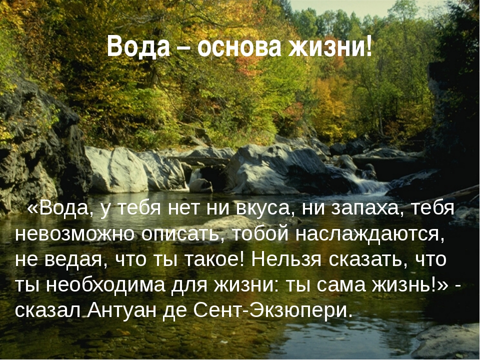 Вода – основа жизни! «Вода, у тебя нет ни вкуса, ни запаха, тебя невозможно о...