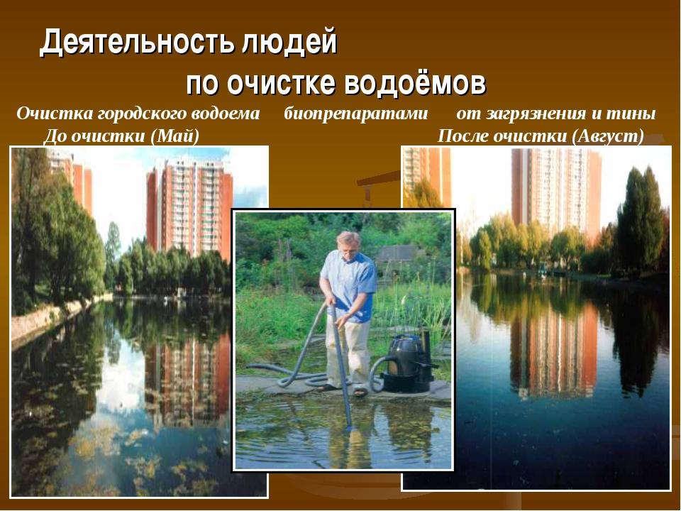 Деятельность людей по очистке водоёмов Очистка городского водоема биопрепара...