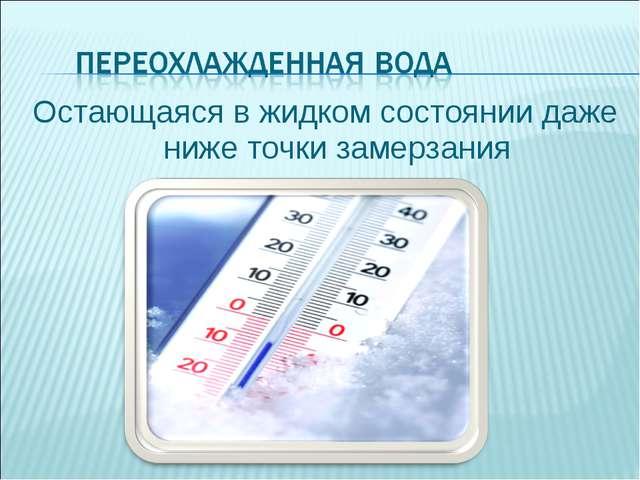 Остающаяся в жидком состоянии даже ниже точки замерзания