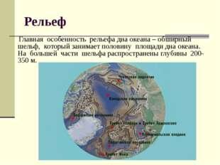 Рельеф Главная особенность рельефа дна океана – обширный шельф, который заним