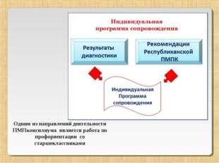 Одним из направлений деятельности ПМПконсилиума является работа по профориент