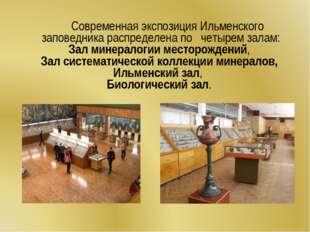 Современная экспозиция Ильменского заповедника распределена по четырем залам