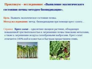 Практикум – исследование: «Выявление экологического состояния почвы методом