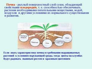 Почва - рыхлый поверхностный слой суши, обладающий свойствами плодородия, т.