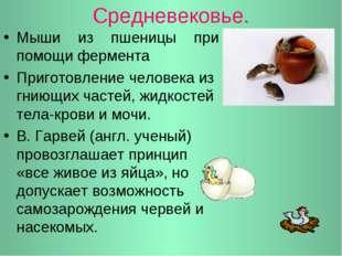 Средневековье. Мыши из пшеницы при помощи фермента Приготовление человека из
