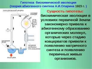 Гипотеза биохимической эволюции (теория абиогенного синтеза А.И.Опарина 1923