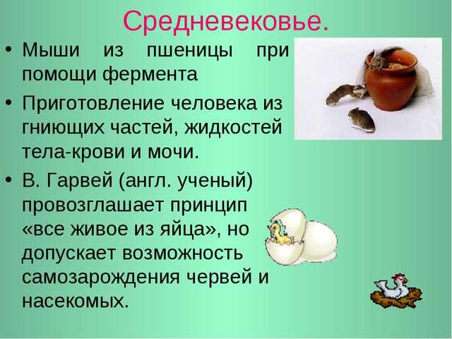 Средневековье. Мыши из пшеницы при помощи фермента Приготовление человека из...