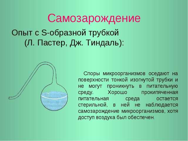 Самозарождение Опыт с S-образной трубкой (Л. Пастер, Дж. Тиндаль): Споры микр...