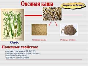 -содержит витамины B1, В2, В3; -очищает организм от солей, шлаков; - повышает
