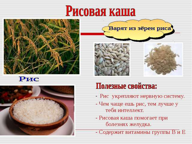 - Рис укрепляют нервную систему. - Чем чаще ешь рис, тем лучше у тебя интелле...