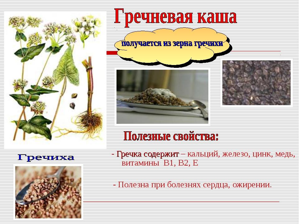 - Гречка содержит – кальций, железо, цинк, медь, витамины В1, В2, Е - Полезн...