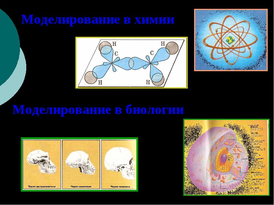 Моделирование в химии Моделирование в биологии