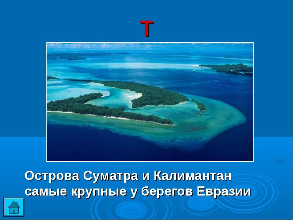 Т Острова Суматра и Калимантан самые крупные у берегов Евразии