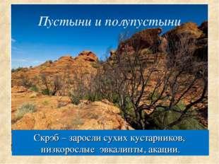 Скрэб – заросли сухих кустарников, низкорослые эвкалипты, акации. Пустыни и п