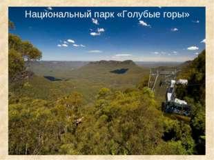 Национальный парк «Голубые горы»