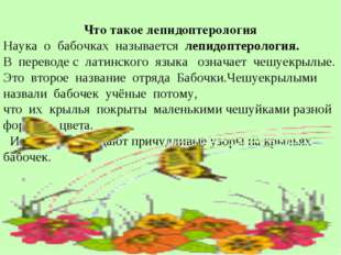 Что такое лепидоптерология Наука о бабочках называется лепидоптерология. В п