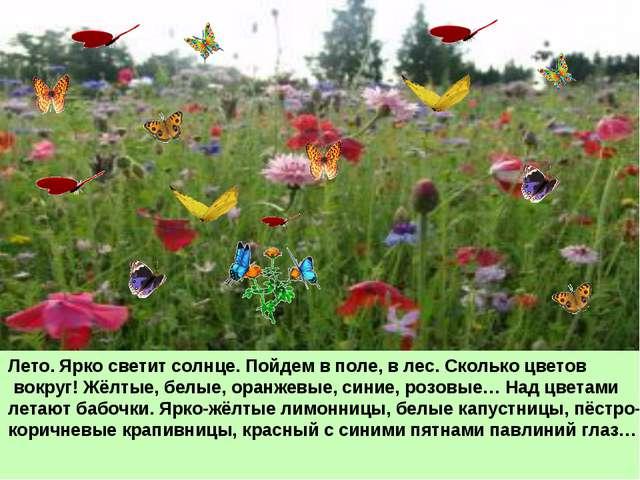 Лето. Ярко светит солнце. Пойдем в поле, в лес. Сколько цветов вокруг! Жёлтые...