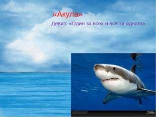 «Акула» Девиз: «Один за всех и все за одного»