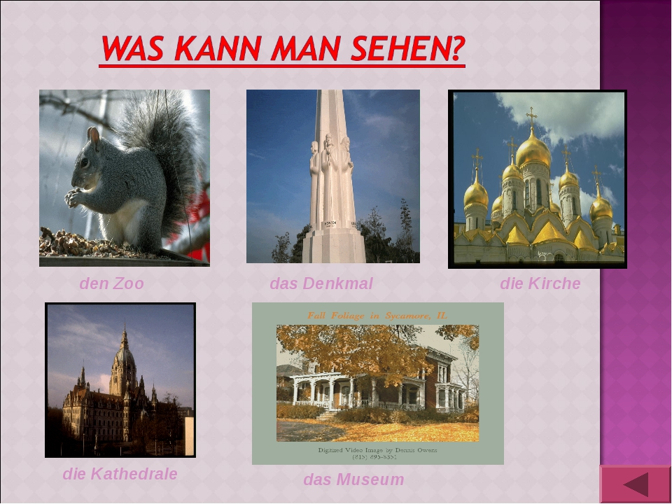 den Zoo das Denkmal die Kirche die Kathedrale das Museum