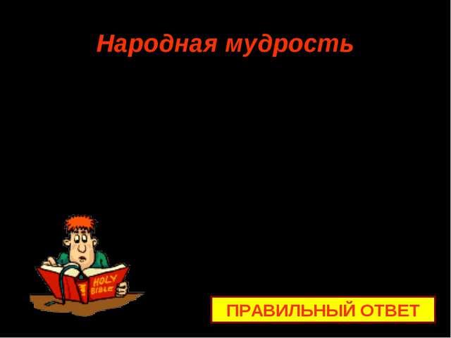 Народная мудрость ПРАВИЛЬНЫЙ ОТВЕТ От умного научишься, от глупого …