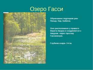 Озеро Гасси Образовано подпором рек- Пихца, Хар, Бабичи. Оно расположено у пр
