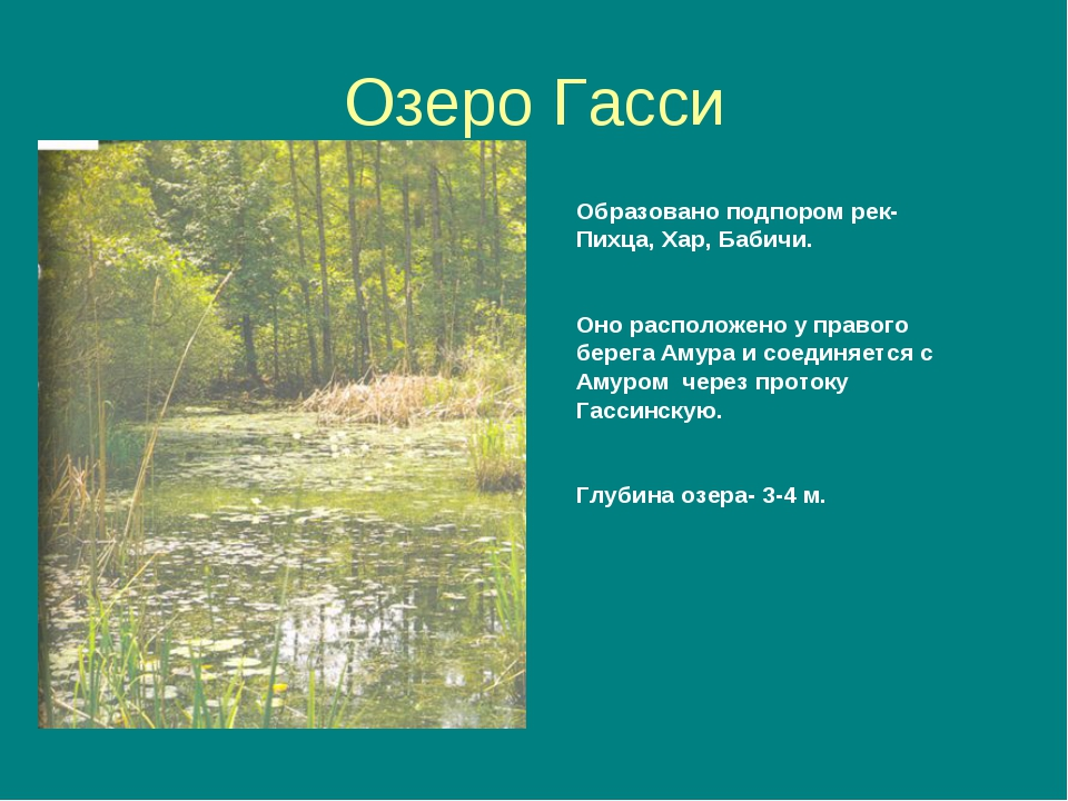 Озеро Гасси Образовано подпором рек- Пихца, Хар, Бабичи. Оно расположено у пр...