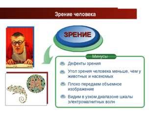 www.themegallery.com Company Logo ЗРЕНИЕ Зрение человека Дефекты зрения Угол