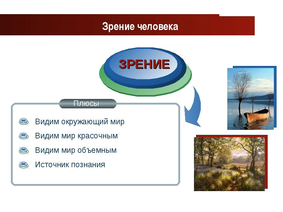 www.themegallery.com Company Logo ЗРЕНИЕ Зрение человека Плюсы Видим окружающ...