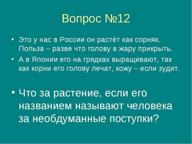 Вопрос №12 Это у нас в России он растёт как сорняк. Польза – разве что голову...