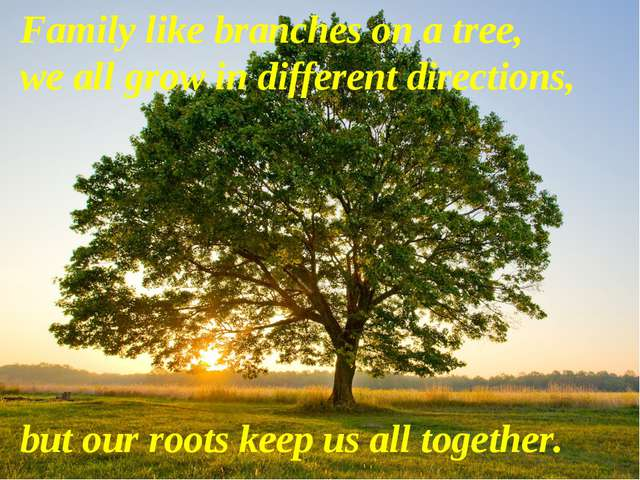 Family like branches on a tree, we all grow in different directions, but our...