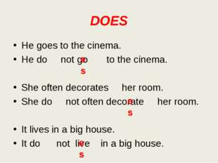 DOES He goes to the cinema. He do not go to the cinema. She often decorates h