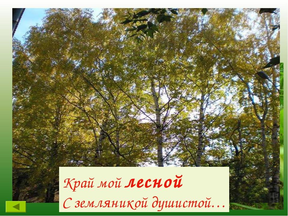 В какой природной зоне расположена наша республика? Край мой лесной С земляни...