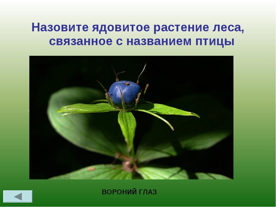 Назовите ядовитое растение леса, связанное с названием птицы ВОРОНИЙ ГЛАЗ