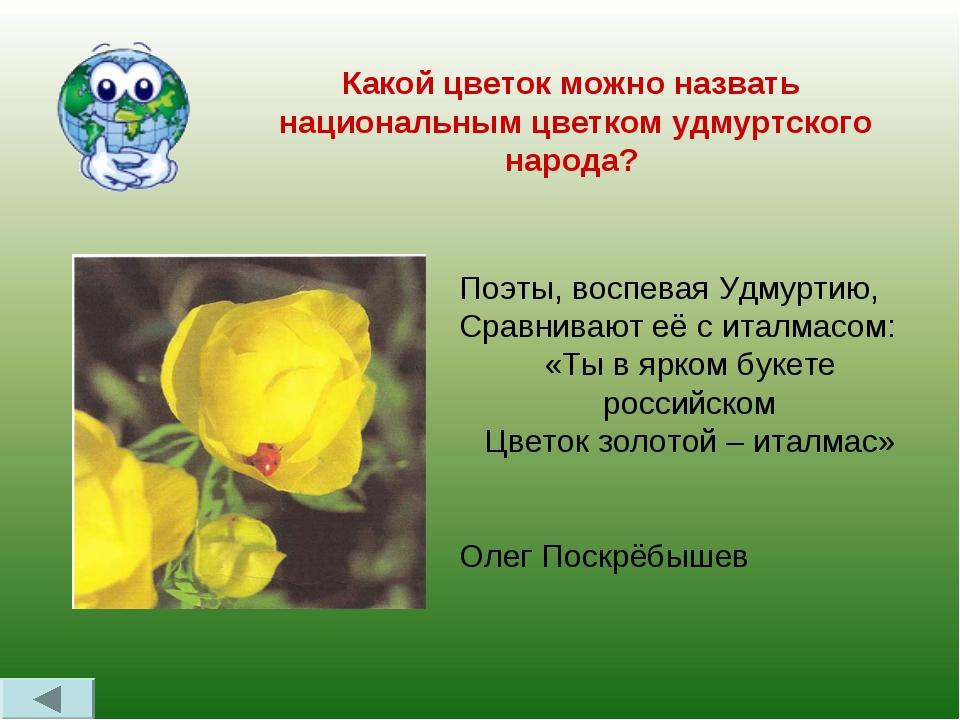 Какой цветок можно назвать национальным цветком удмуртского народа? Поэты, во...