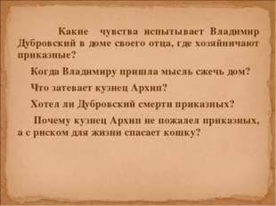 Какие чувства испытывает Владимир Дубровский в доме своего отца, где хозяйни
