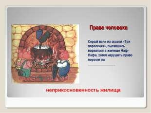 Права человека Серый волк из сказки «Три поросенка», пытавшись ворваться в жи