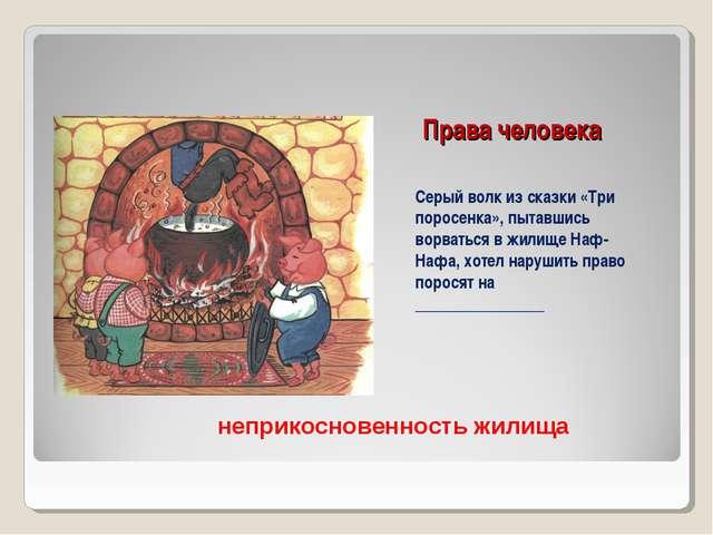 Права человека Серый волк из сказки «Три поросенка», пытавшись ворваться в жи...