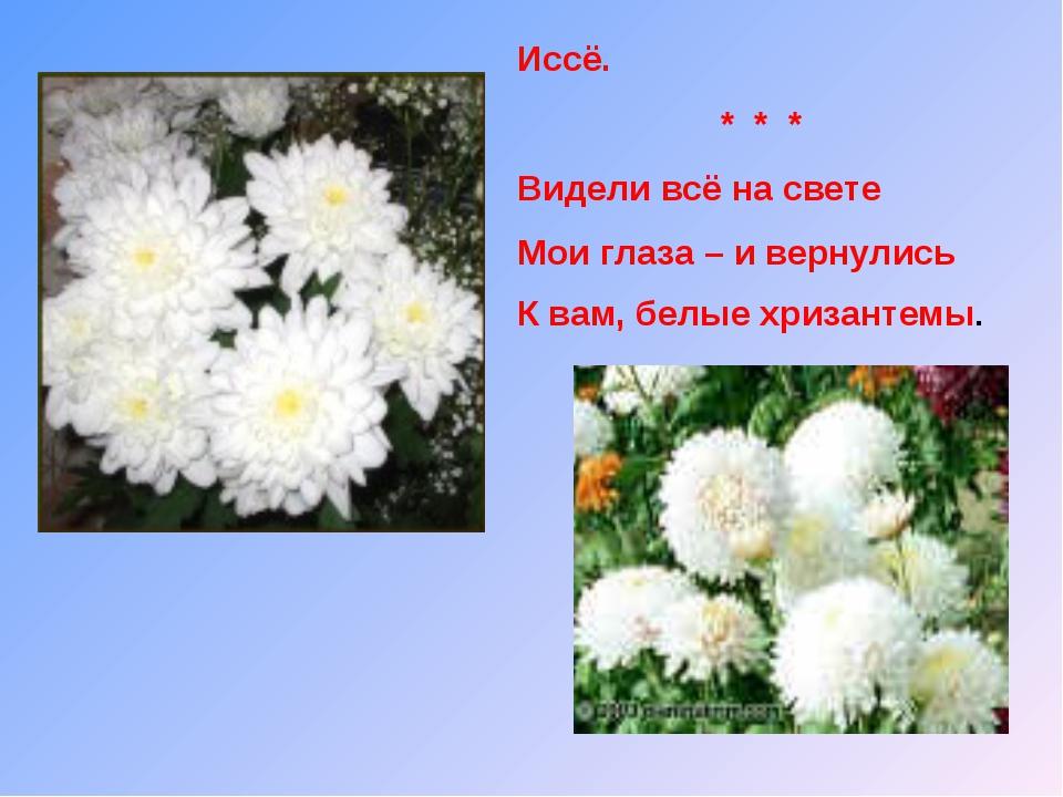 Иссё. * * * Видели всё на свете Мои глаза – и вернулись К вам, белые хризанте...