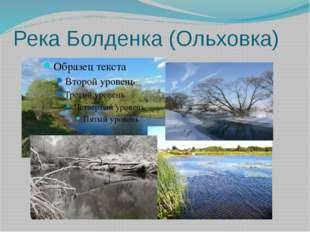 Река Болденка (Ольховка)