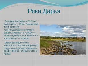 Река Дарья  Площадь бассейна – 55,5 км², длина реки – 16 км. Равнинного типа