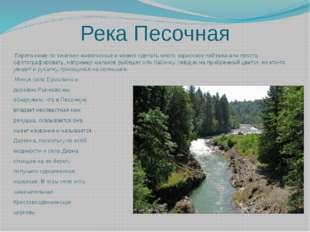 Река Песочная  Берега ниже по течению живописные и можно сделать много зарис