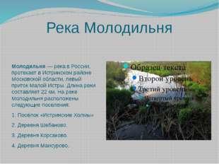 Река Молодильня Молодильня— река в России, протекает в Истринском райо