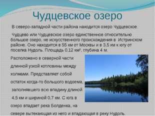 Чудцевское озеро  В северо-западной части района находится озеро Чудцевское.
