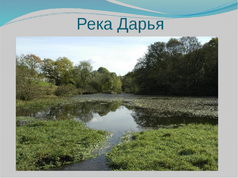 Река Дарья
