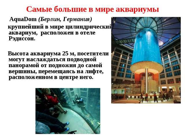 Самые большие в мире аквариумы AquaDom (Берлин, Германия) крупнейший в мире ц...