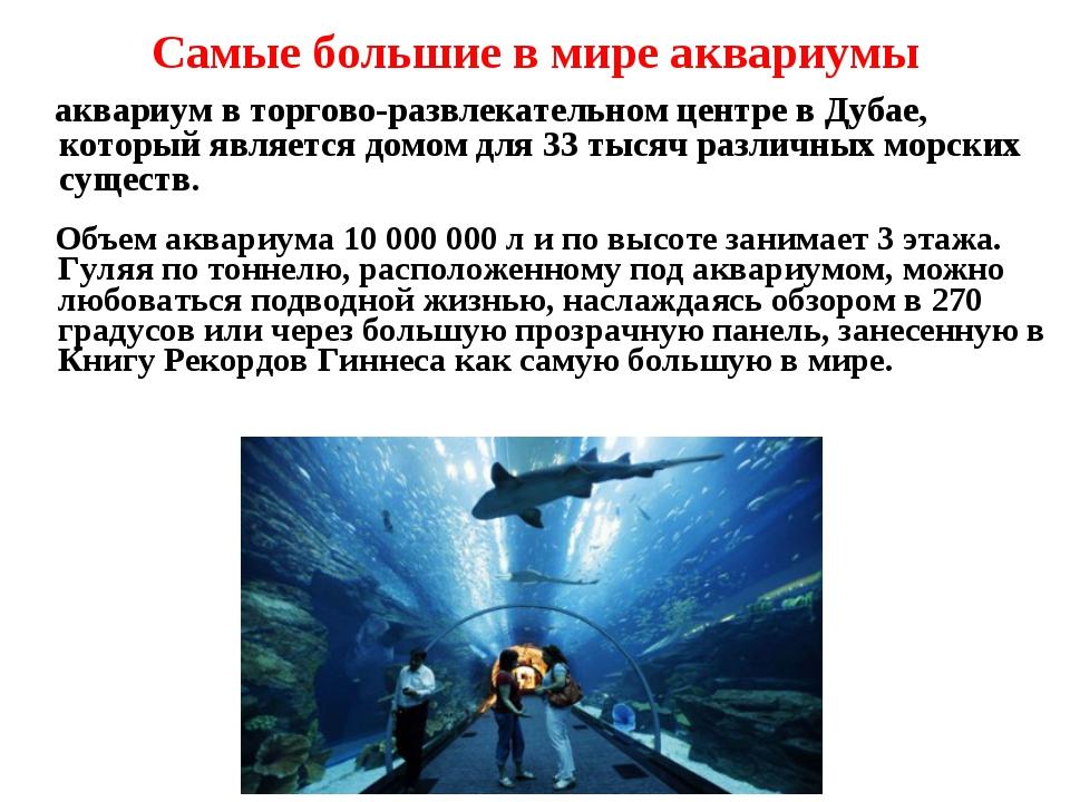 Самые большие в мире аквариумы аквариум в торгово-развлекательном центре в Ду...