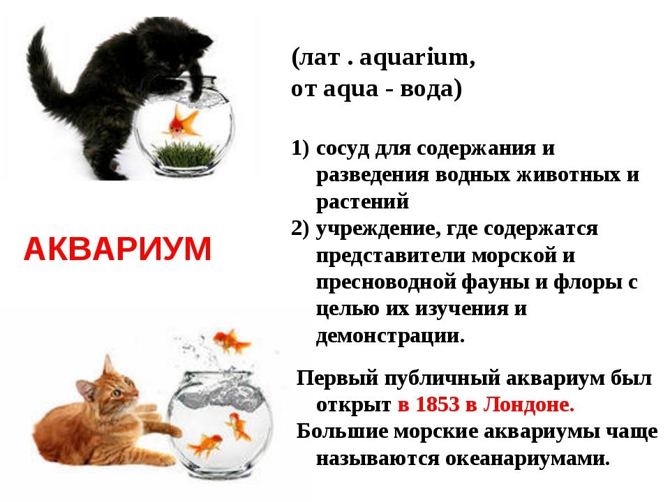 (лат . аquarium, от аqua - вода) сосуд для содержания и разведения водных жив...