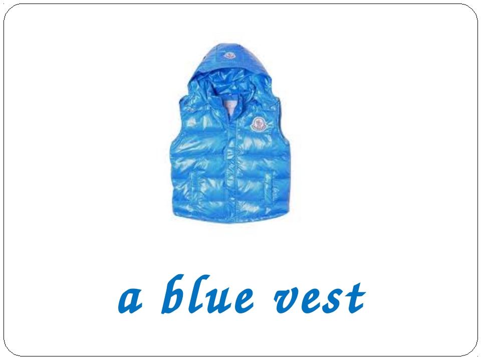 a blue vest