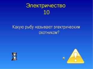 Электричество 10 Какую рыбу называют электрическим охотником?