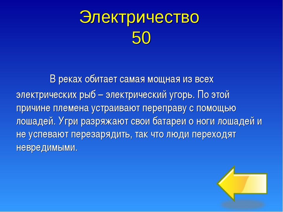 Электричество 50  В реках обитает самая мощная из всех электрических рыб – э...